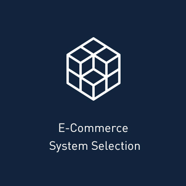 E-Commerce System Selection