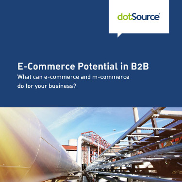 Whitepaper e-commerce potential in b2b